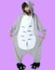 Picture of Totoro Onesie