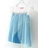 Picture of Disney Frozen Elsa - Lace Satin Tulle Dress