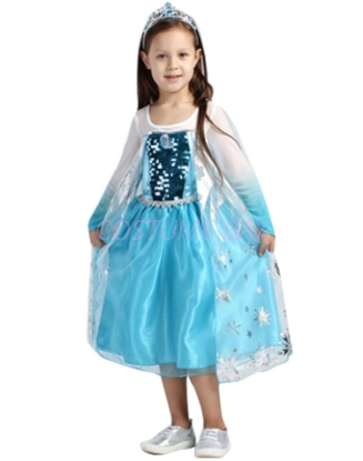 Picture of Frozen Princess Elsa Snow Queen Costume Dress