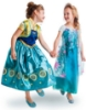 Picture of Princess Anna Frozen Costume Dress