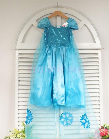 Picture of Princess Elsa Frozen Costume Dress