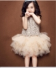 Picture of Girls Wedding Bridesmaid Flower Party Princess Formal Ball Lace Tutu Dress