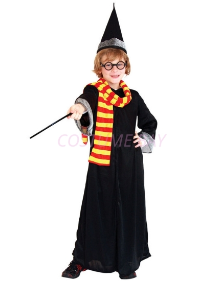 Picture of Boys Superhero Harry Potter Costume