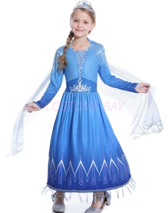 Picture of Frozen 2 Princess Elsa Dress Costume BOOK WEEK