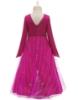 Picture of Frozen 2 Princess Anna Dress Costume