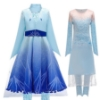 Picture of Frozen 2 Elsa Princess Costume for BOOK WEEK