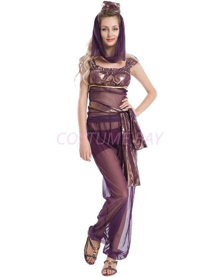 Picture of Womens  Aladdin Belly Dance Fancy Dress-Purple